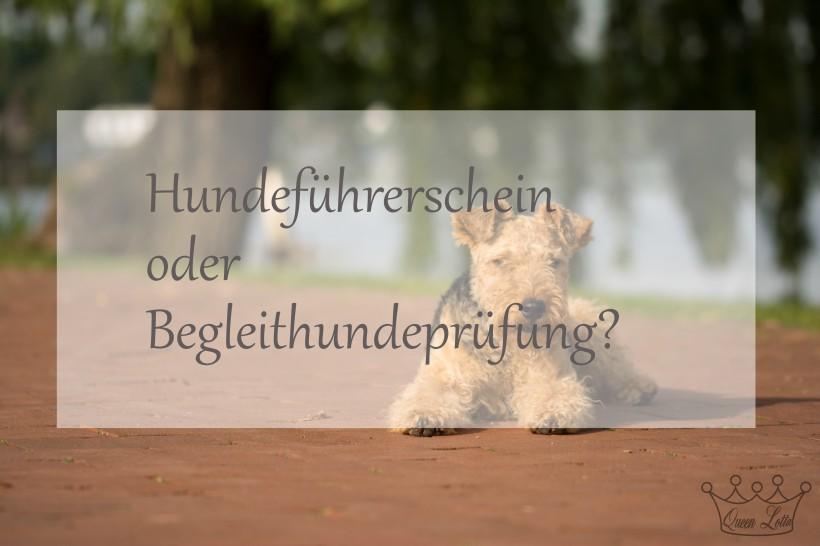 HuFü oder BH
